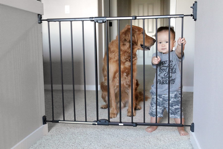 Is a Baby Gate Necessary for Baby Proofing