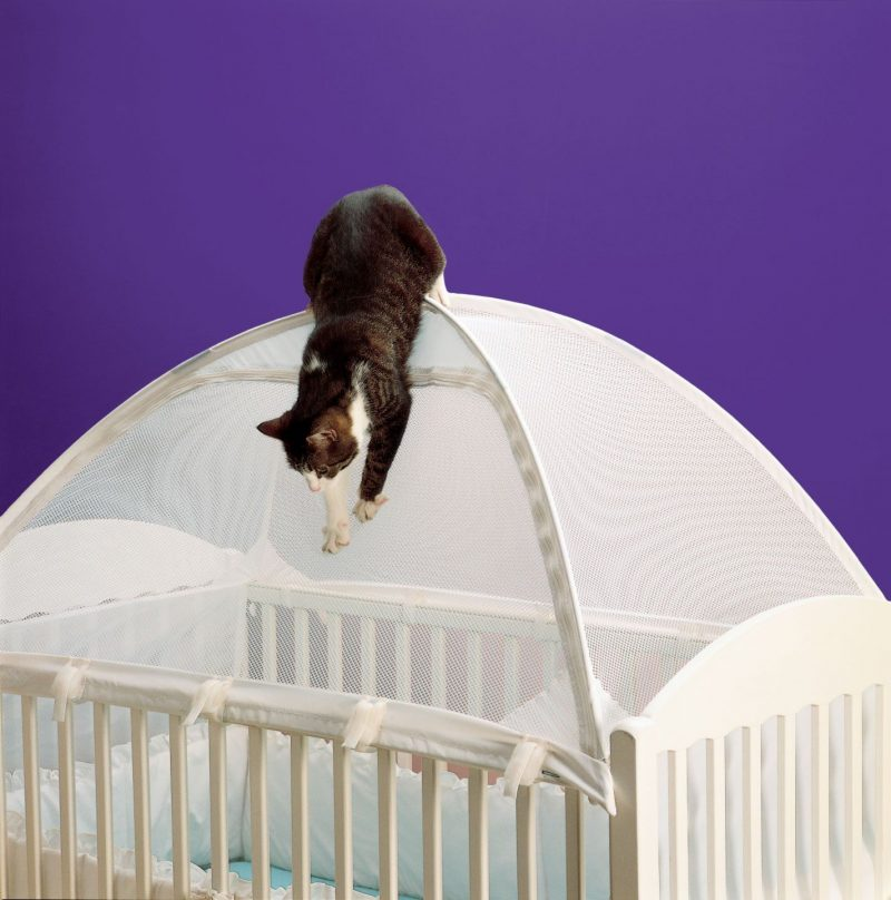 how to keep cat out of crib with crib tent