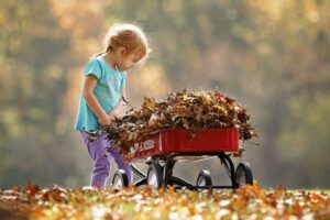 Best Wagons for your Kids
