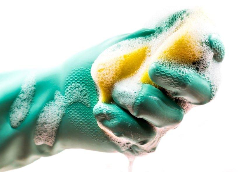 gloved hand holding sponge