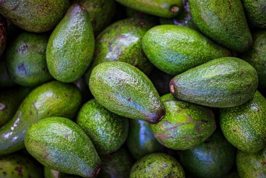 avocado pile