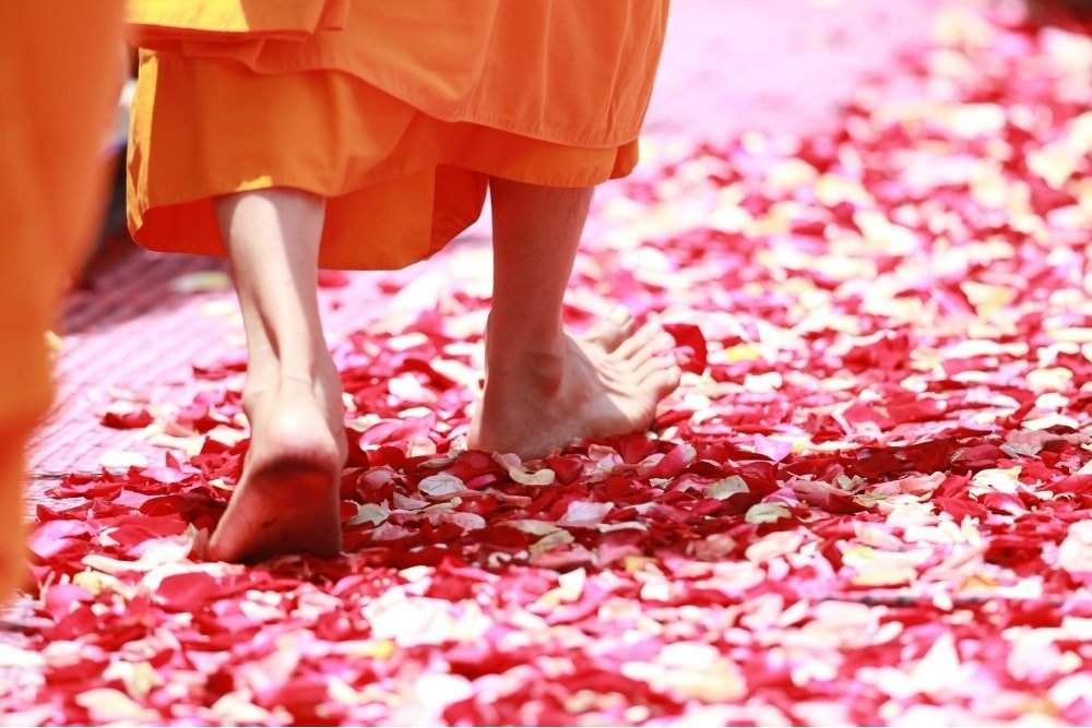 buddhist monk stepping over petals