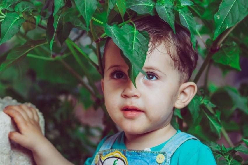 little boy standing near leaves