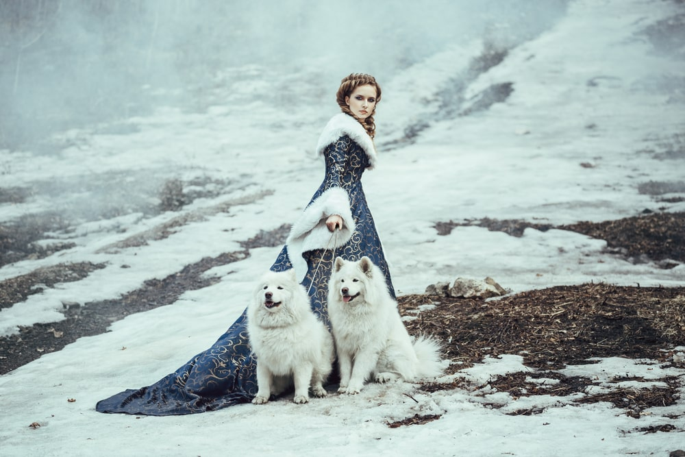 woman in winter with dogs