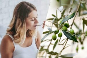Is It Safe To Eat Olives During Pregnancy?