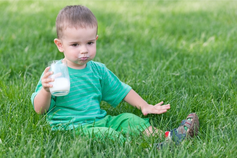 How To Get Your Toddler To Drink Milk