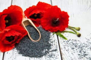 Are Poppy Seeds Safe During Pregnancy?