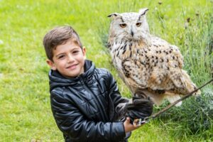 45 Best Owl Names with Meanings